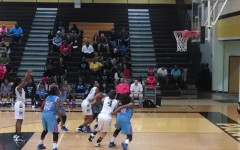 Girls basketball playoffs: Plano vs. Skyline