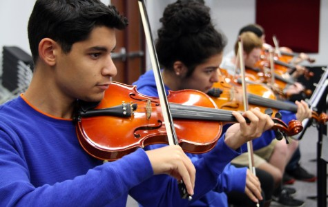 Orchestra to hold winter concert Dec. 7
