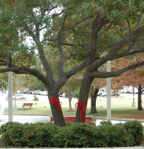 Red Ribbon Week raises drug awareness