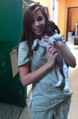 Vet Clinic students explore career choices