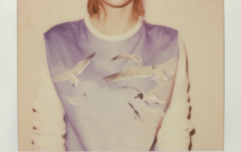 Photo from taylorswift.com.