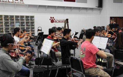 Orchestra students being conducted by guest teacher Jennifer Guffey. (Photo by Abby Zimmardi)