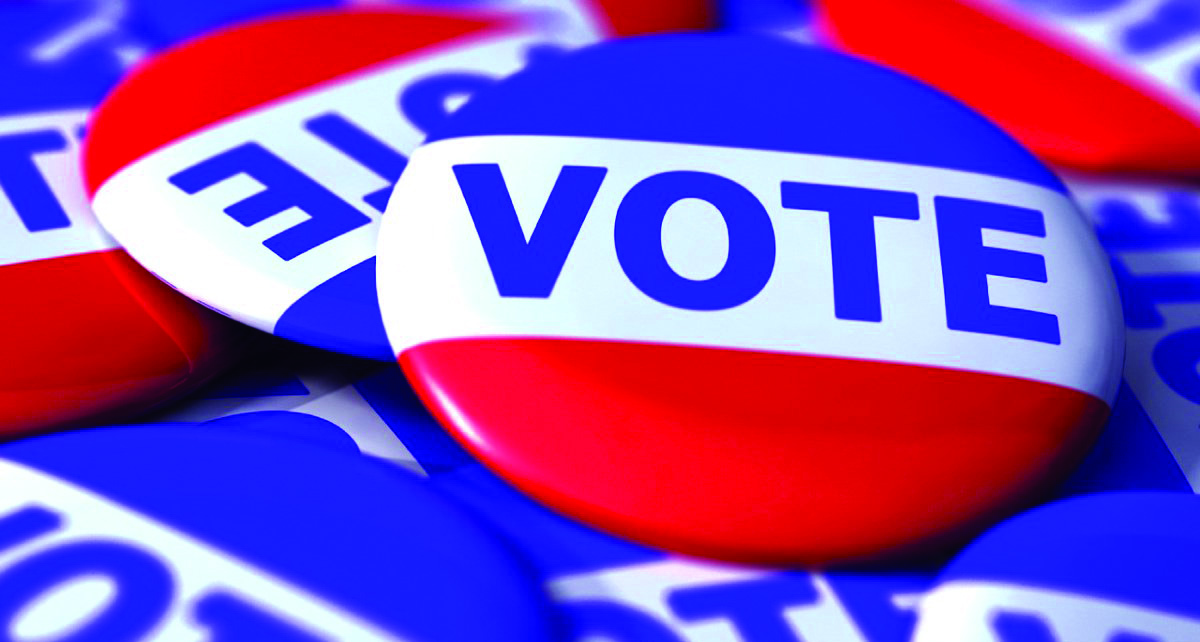 Wildcats become local government voters