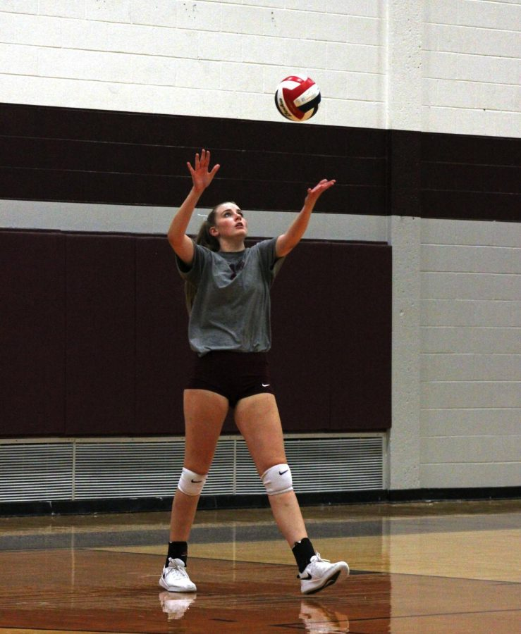 Lady wildcat serves the ball at Plano gymnasium