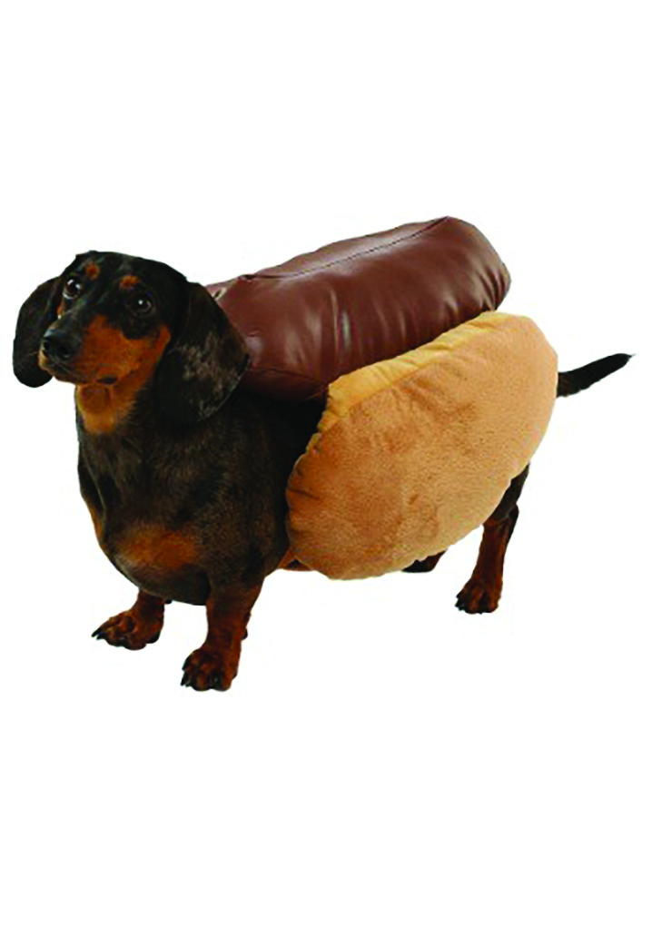 Wiener dog hot dog costume (photo courtesy of halloweencostumes.com)