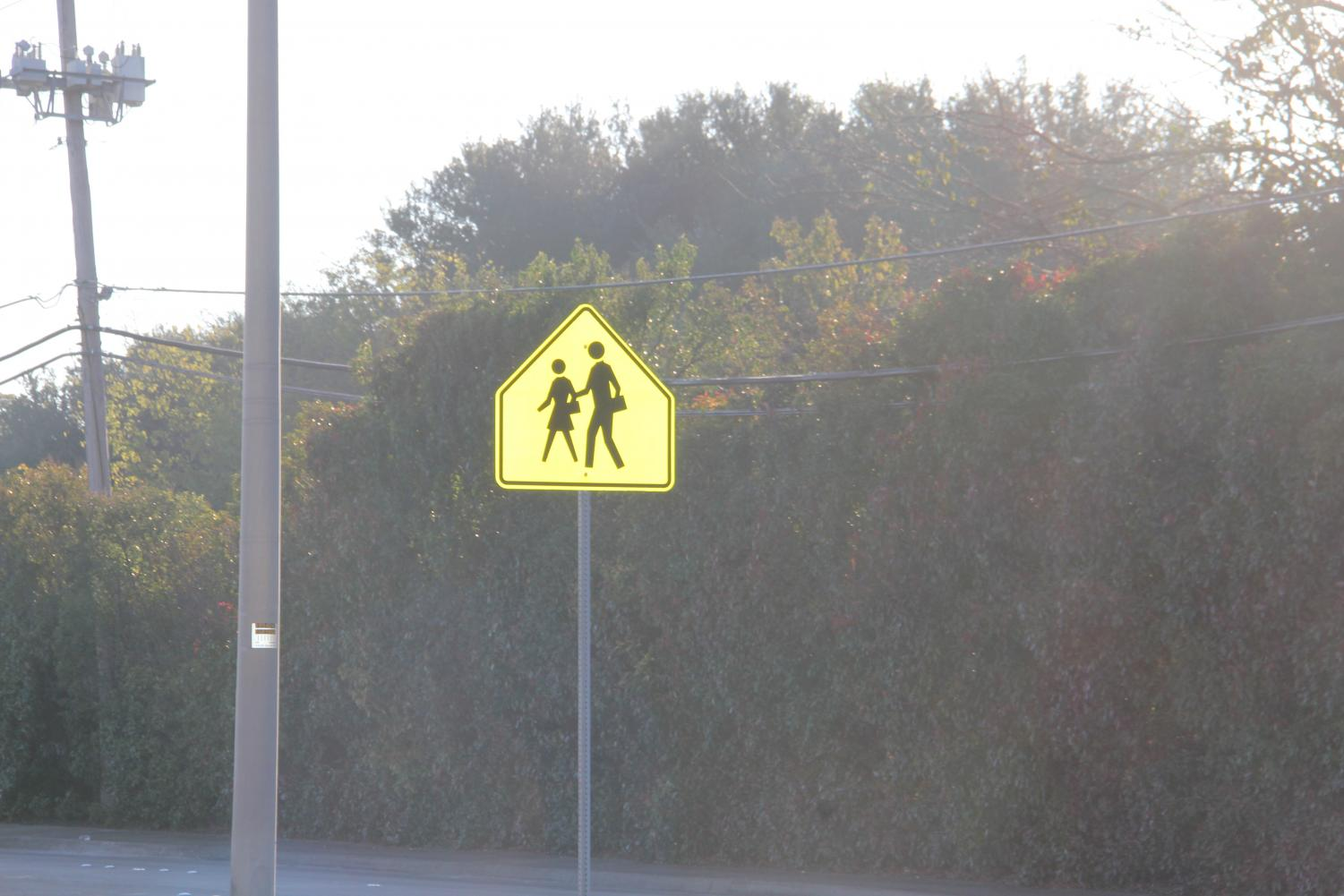 A yield to pedestrians sign next to a busy street gone ignored or unnoticed by many drivers.