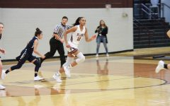 Lady wildcats strive to triumph another state championship