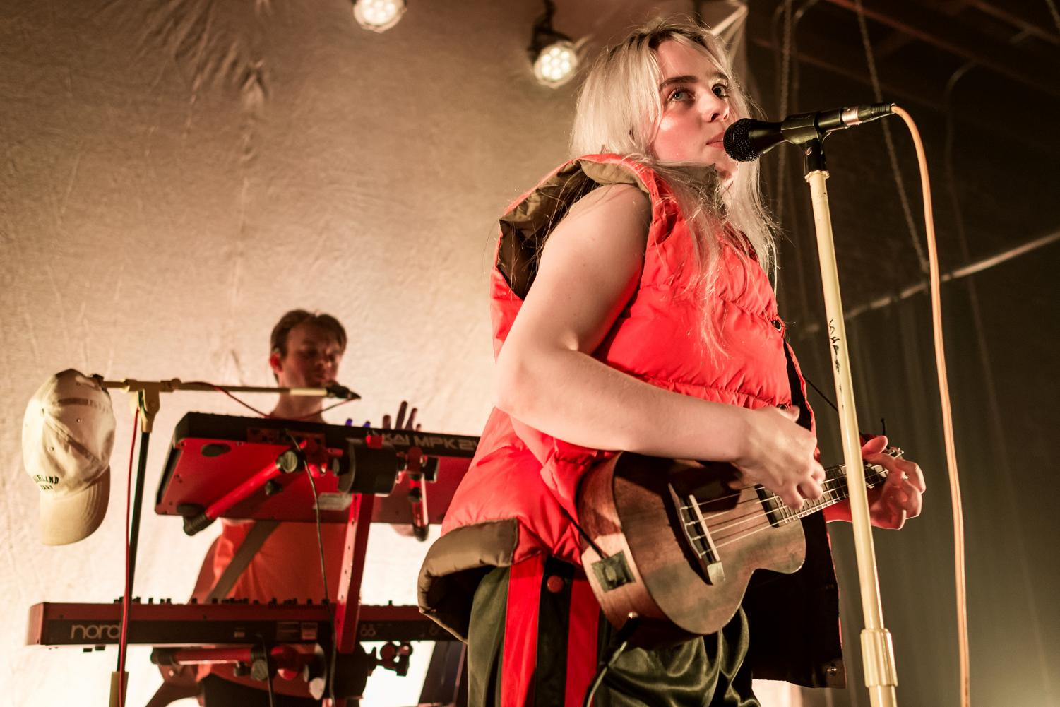 Billie Eilish performing at a Los Angeles concert in 2017.  (photo courtesy of Wikimedia Commons)